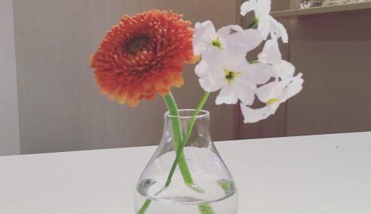 新しいお箸置きとお花